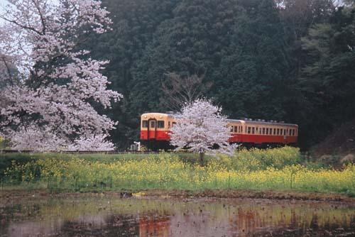 小湊鉄道_0001.jpg