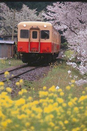 小湊鉄道_0002.jpg